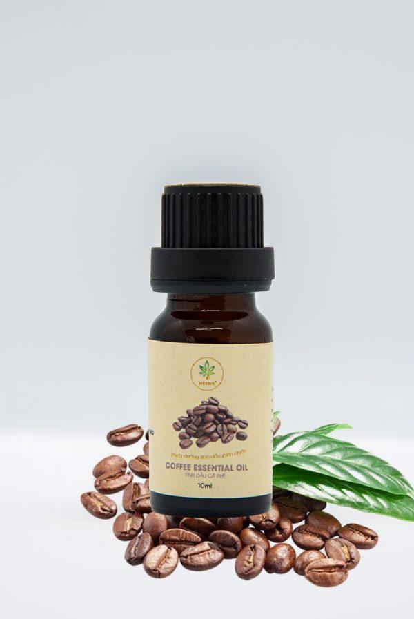 Mua tinh dầu cà phê nguyên chất ở đâu?